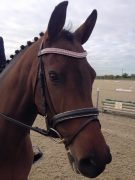 "Movie modelling her Clear, Rose and Clear curved 3/4"" Preciosa Crystal browband"